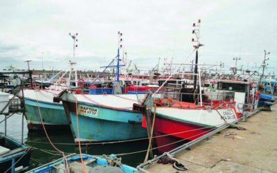 Plant Tour with Talhado Fishing Enterprises
