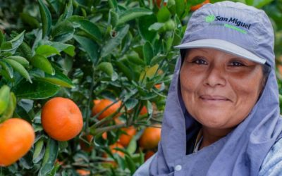 San Miguel: Creating Value from Nature